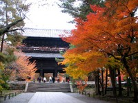 Kyoto112301_1