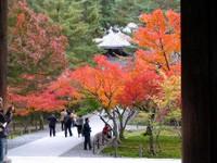 Kyoto112302_1