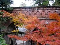 Kyoto112303_1