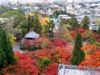 Kyoto112309_1