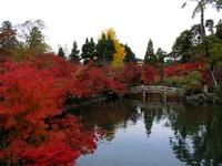 Kyoto112311_1