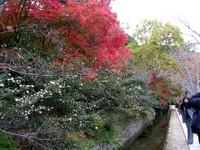 Kyoto112315_1