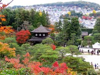 Kyoto112319_1